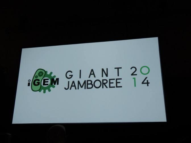 Giant Jamboree 2014 en breve
