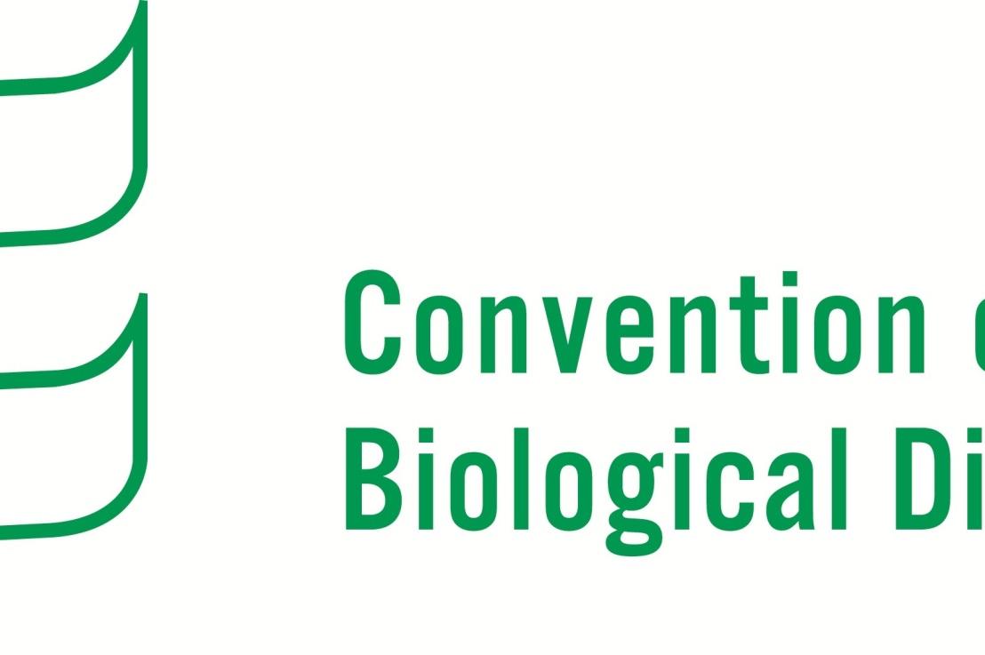 Foro en línea sobre biología sintética delCBD